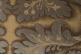 Ткань арт. SNO20B