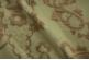 Ткань арт. PALAZZO IV