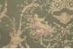 Ткань Montespan landes