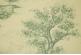 Ткань Cezanne