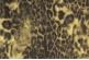 Ткань Molo