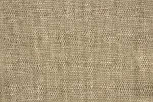 Ткань Isron Plain col. 181