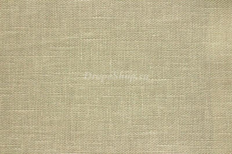 Ткань Isron Plain col. 183