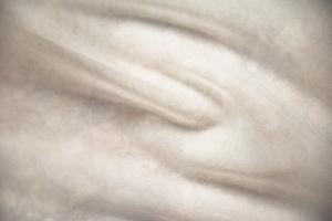Ткань Crocus col.Funghi