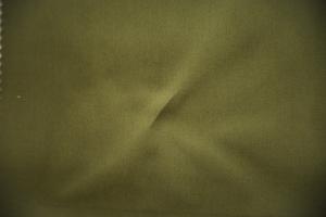 Ткань Colorful col. Moss