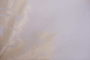 Ткань арт. R 236