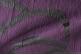 Ткань арт. Illusion 35-38